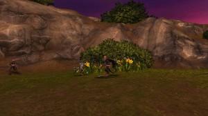 Kobold et Fleurs