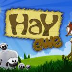 HayEwe