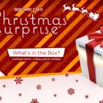 chrismas_surprise