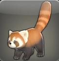 Petit_panda_roux