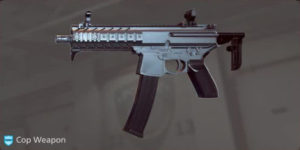 BFH_Armes_PDW4_MPX