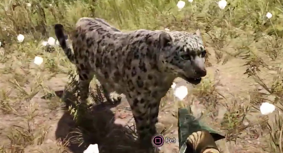 how to tame animals in far cry 4
