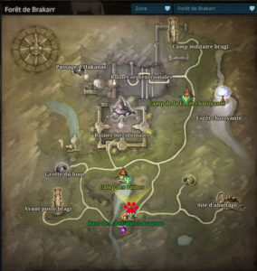Riders_of_icarus_guide_familiers_foret_brakkar_brave1