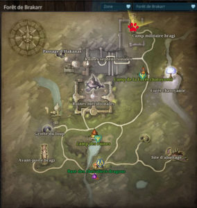 Riders_of_icarus_guide_familiers_foret_brakkar_defenses_froides1