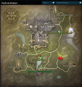 Riders_of_icarus_guide_familiers_foret_brakkar_loup_gris_alpha1