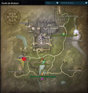 Riders_of_icarus_guide_familiers_foret_brakkar_loup_ruines1