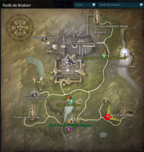 Riders_of_icarus_guide_familiers_foret_brakkar_sanglier_sauvage1