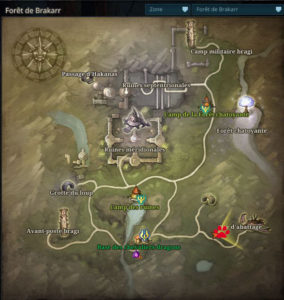 riders_of_icarus_guide_familiers_foret_brakarr_sanglier_sauvage1